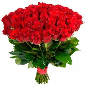 Розы Эквадор 51 роза 50 см